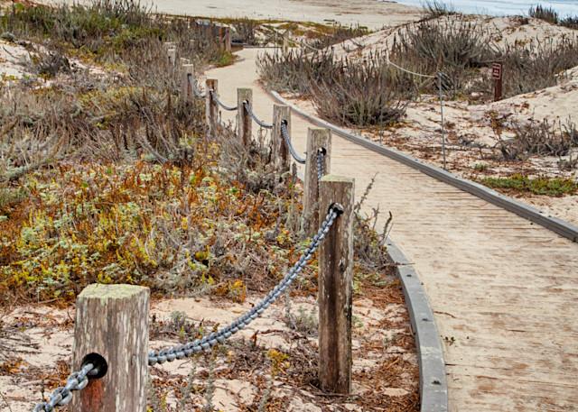 Asilomar Photography Art   Rosanne Nitti Fine Arts