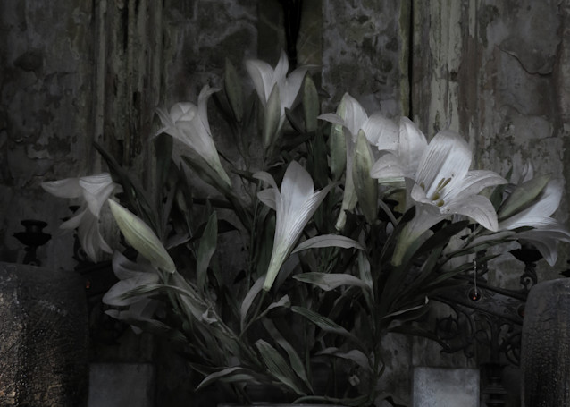 Lilies In Blue Willow Photography Art | Dan Katz, Inc.