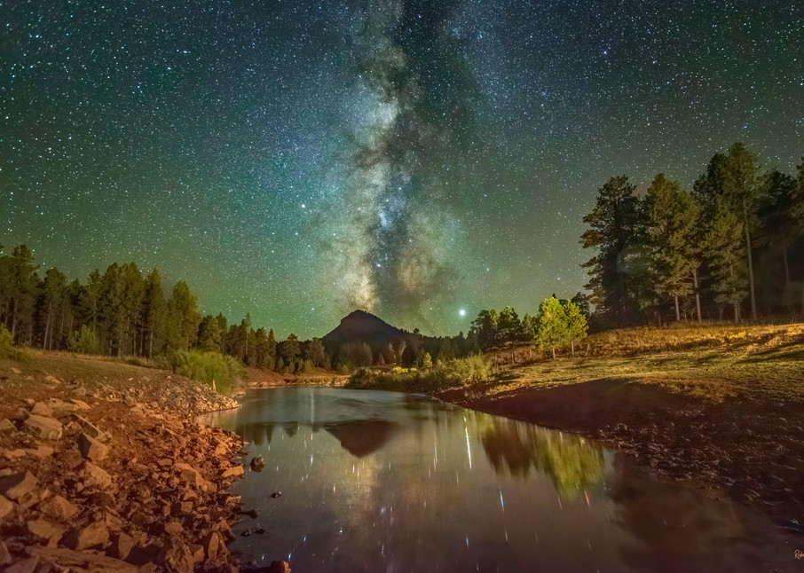 Celestial Wilderness