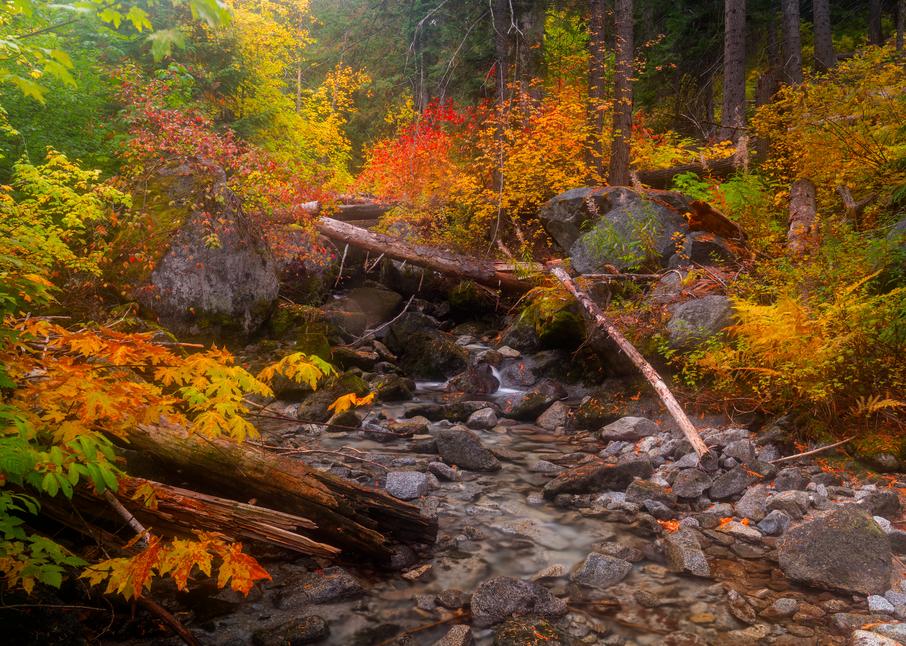 Tumble Creek Autumn Photography Art | Craig Primas Photography