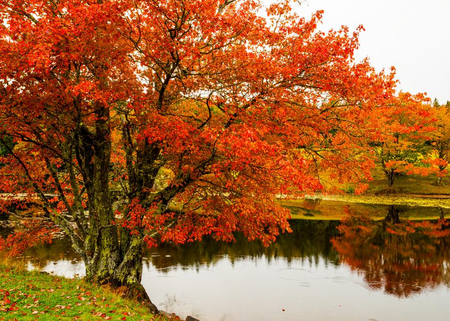Long Pond Autumn Photography Art   Craig Primas Photography