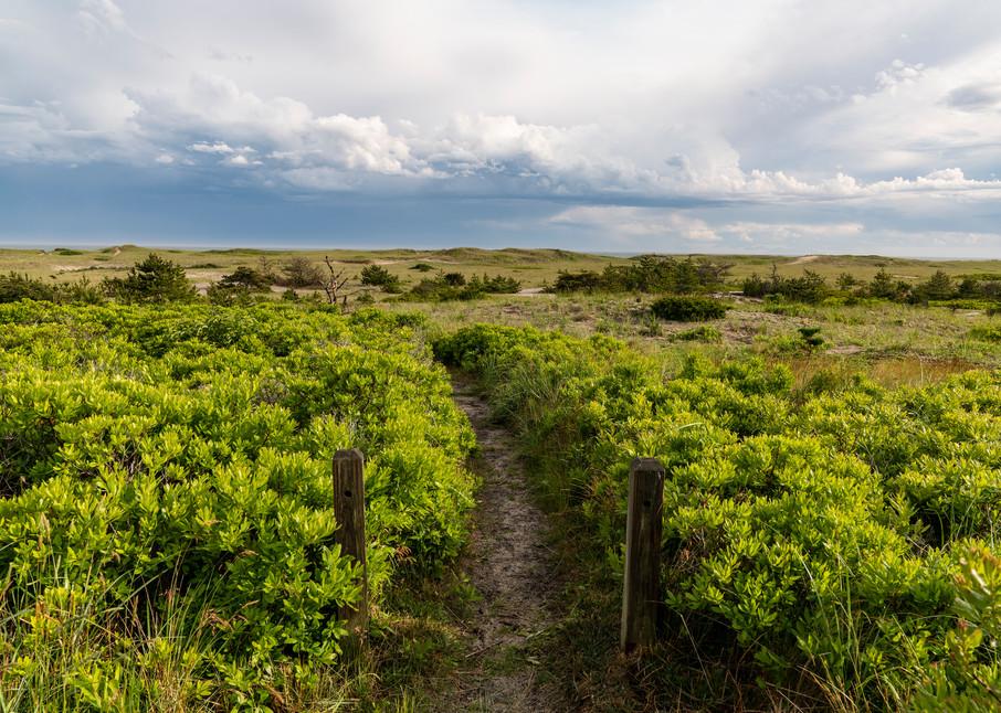 Surfside Beach Path #2 Photography Art | Kit Noble Photography