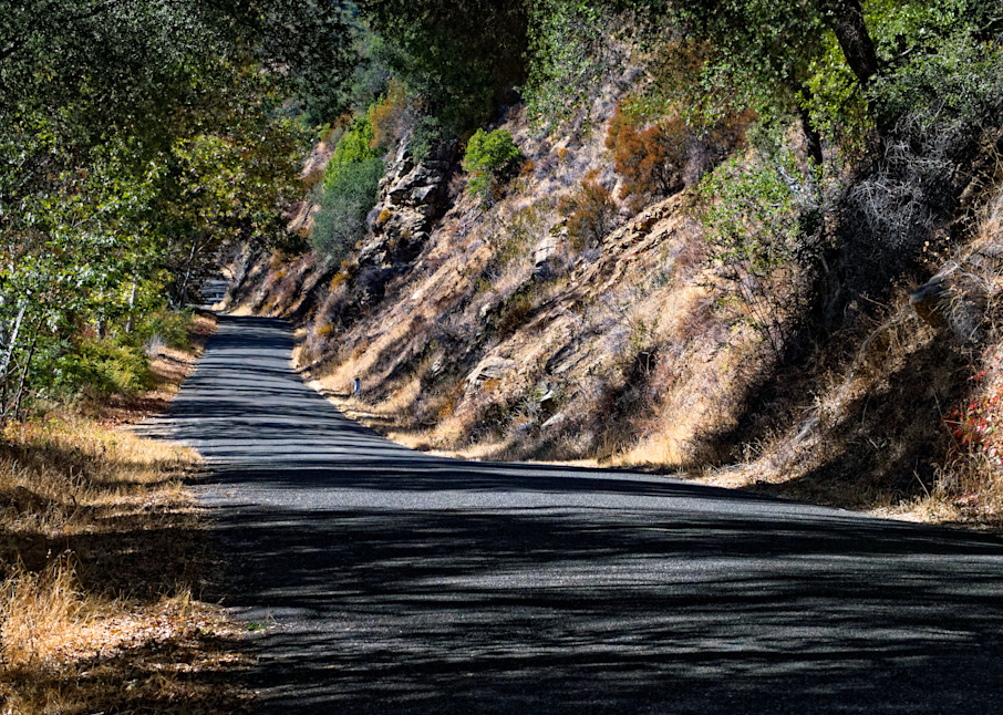 Los Padres Backroad Photography Art | FocusPro Services, Inc.
