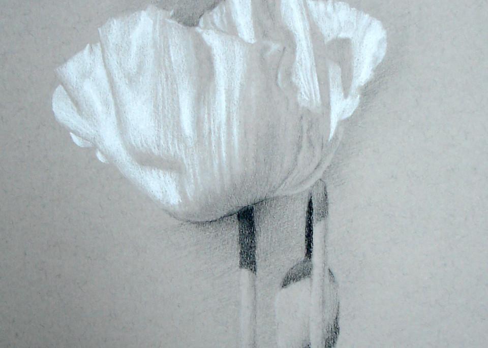 Poppy, White Silk Art | Cristina Goia