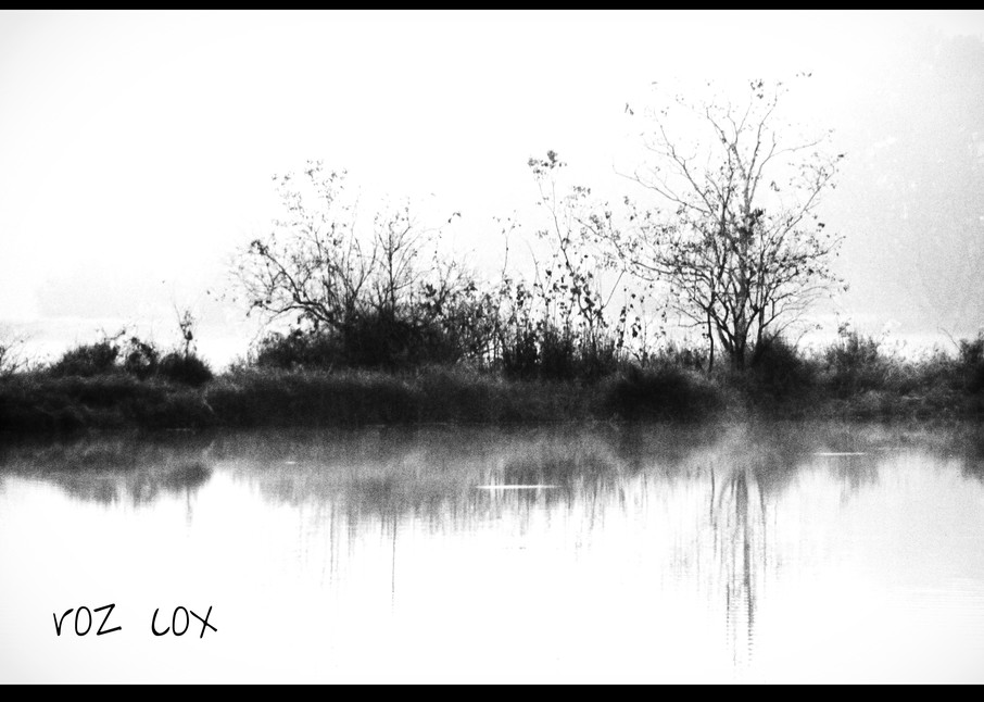 Black and White Foggy Morning lll