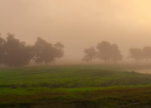 Foggy morning sunrise panoramic