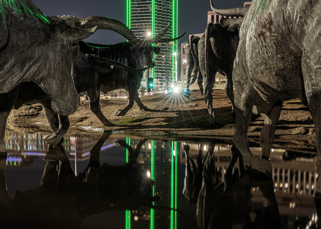 Pioneer Plaza Stampede Reflection - Dallas City Skyline Picture