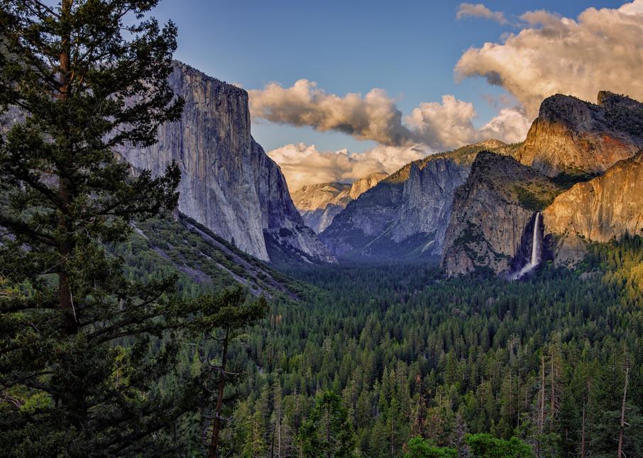 Spring Evening in Yosemite | Shop Photography by Rick Berk