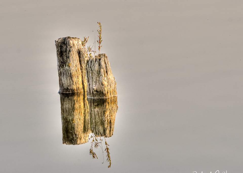"""""""Quiet Waters"""", PhotoDiscoveries"""