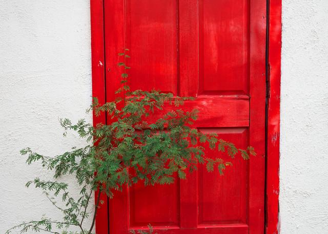 DP636 Presidio Red