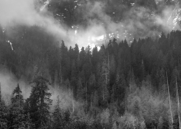 Misty Mountain Art | James Alfred Friesen