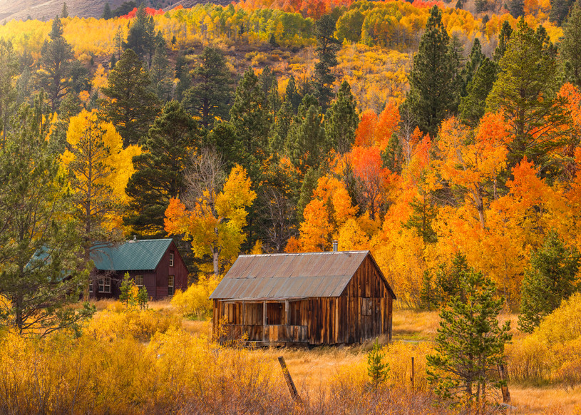 Hope Valley Cabins Fall Colors