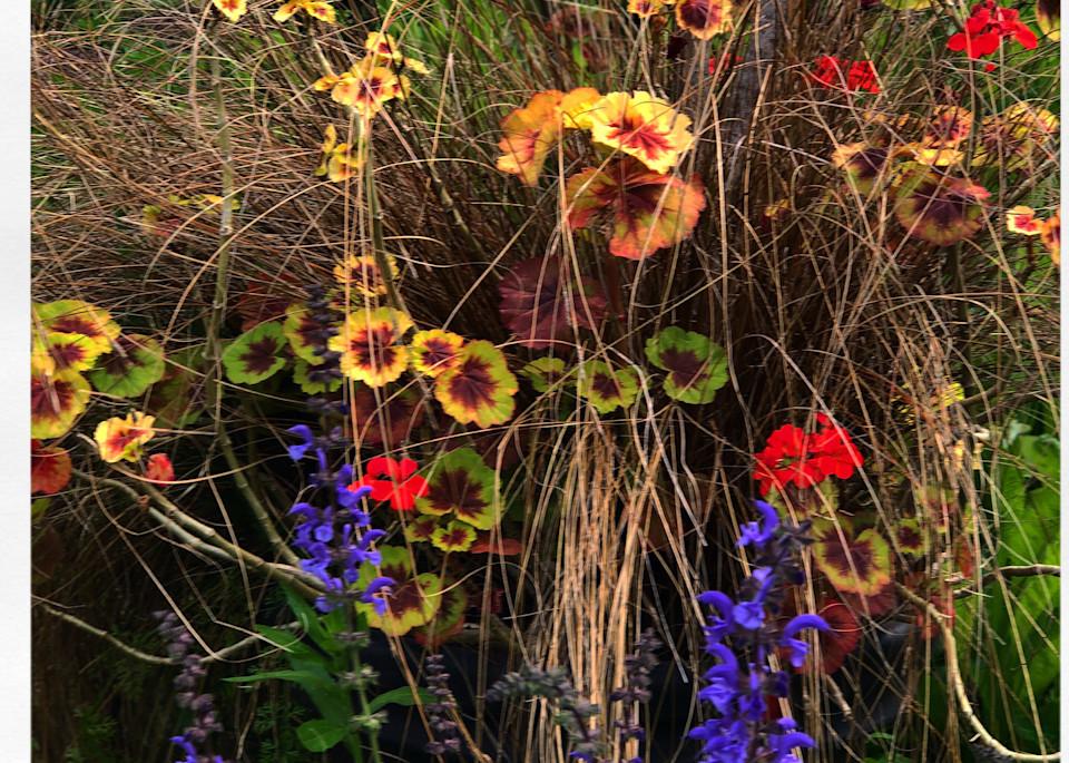 Wildflowers Gone Wild Instagram Print
