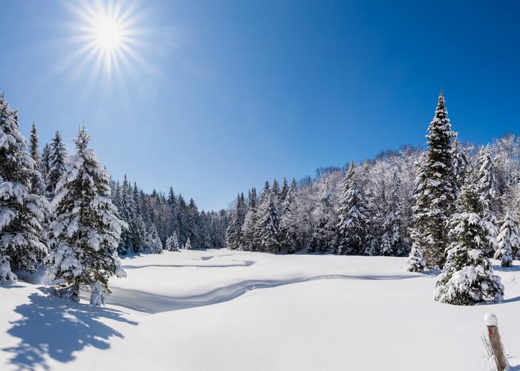 Snowmobile 2020  Photography Art | Kurt Gardner Photogarphy Gallery