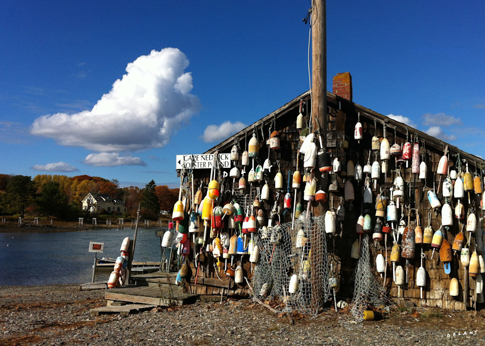 Maine Lobster Buoys in Fall Photo Print