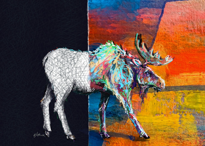 Mooser, Colour Divide Art   Kristyn Watterworth