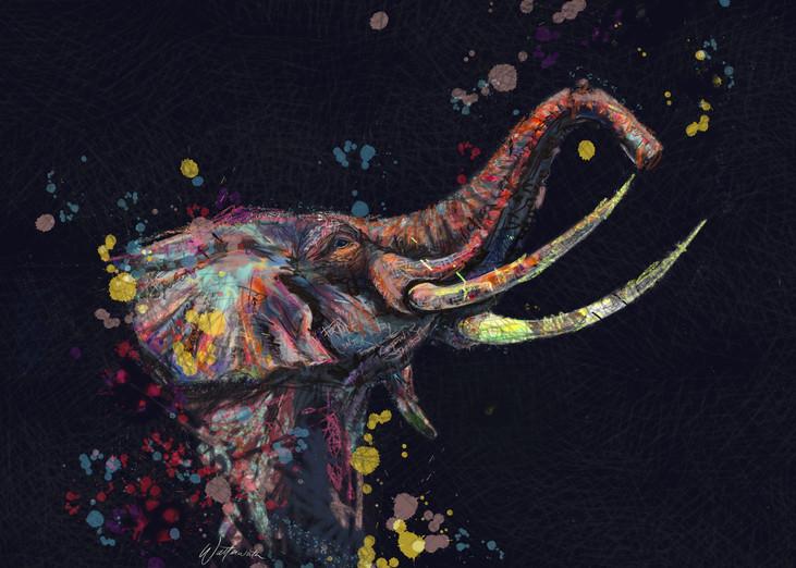 Elephant Dark Art   Kristyn Watterworth