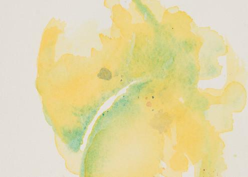 Lemons  Art   Debra Bruner Studio