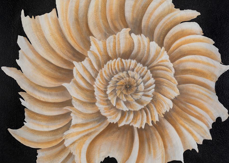 Precious White Shell Art | Lindberghaus, Art by Dagi G.