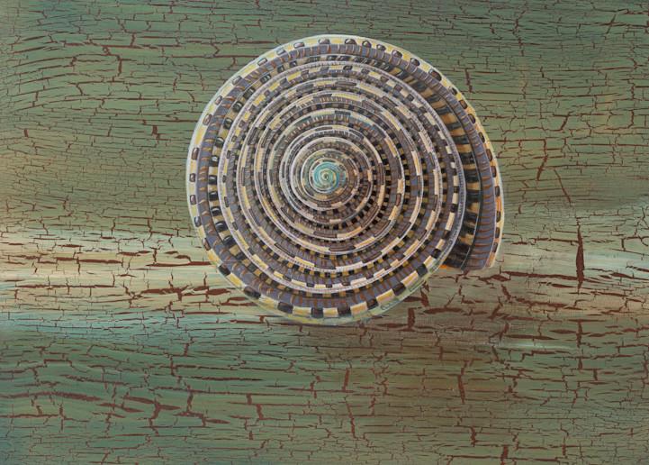 Sundial Shell Art | Lindberghaus, Art by Dagi G.