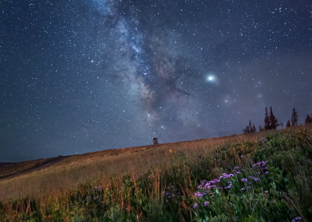 Meadow Of Stars Photography Art | McKendrick Photography