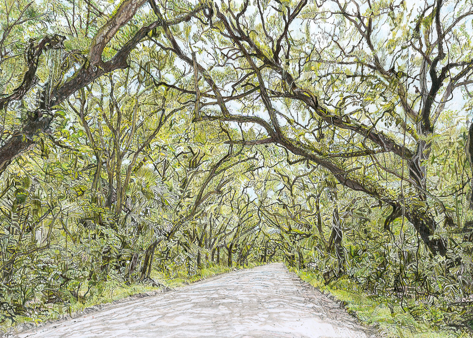 Botany Bay On Edisto Art | Digital Arts Studio / Fine Art Marketplace