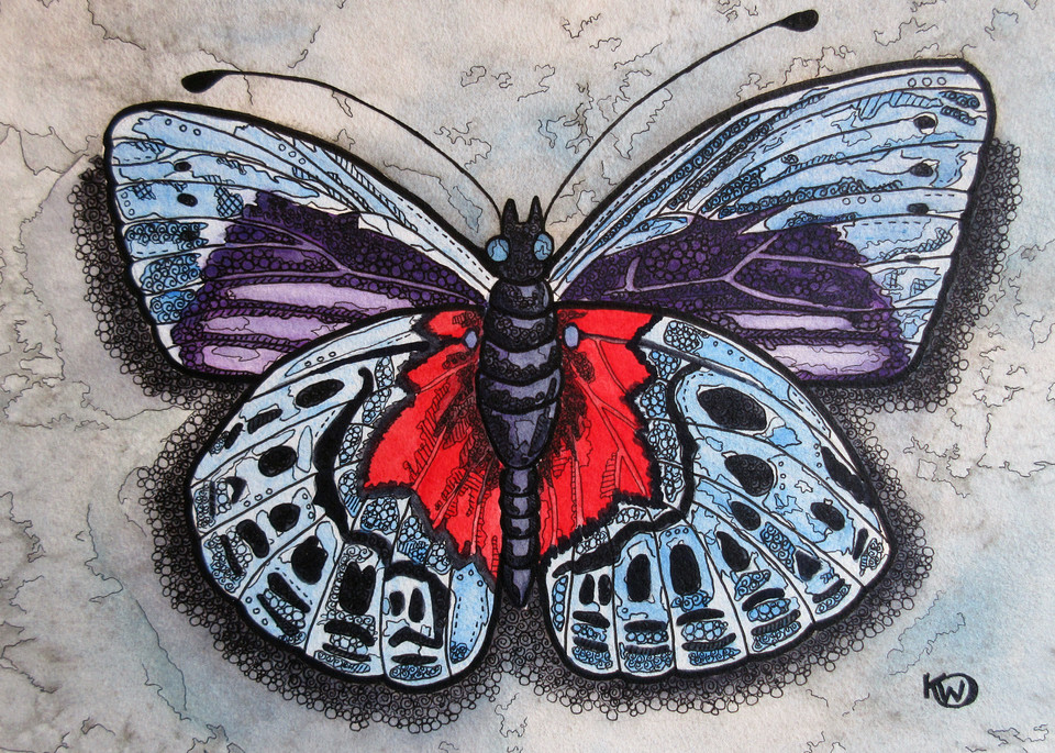 Blue/Red Butterfly