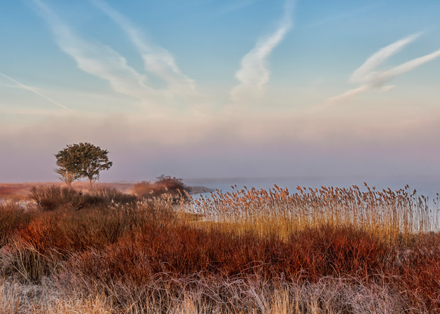 Long Point Fog Layer Art | Michael Blanchard Inspirational Photography - Crossroads Gallery