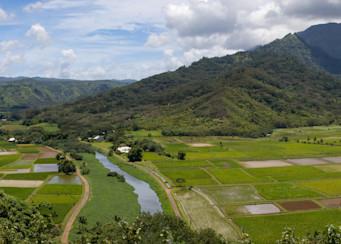 Hanalei Valley Panorama Photography Art | Leiken Photography