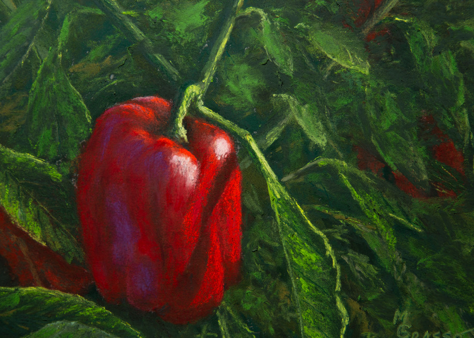 Red Peppers Art | Mark Grasso Fine Art