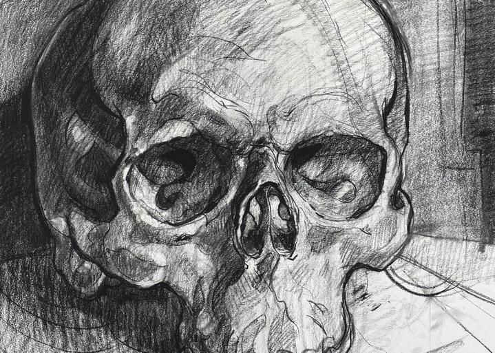 Skull V.7 Art | Matt Pierson Artworks