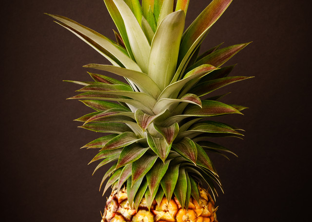 White Pineapple King