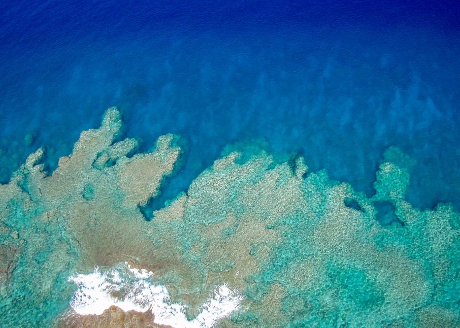 Aerial Reef