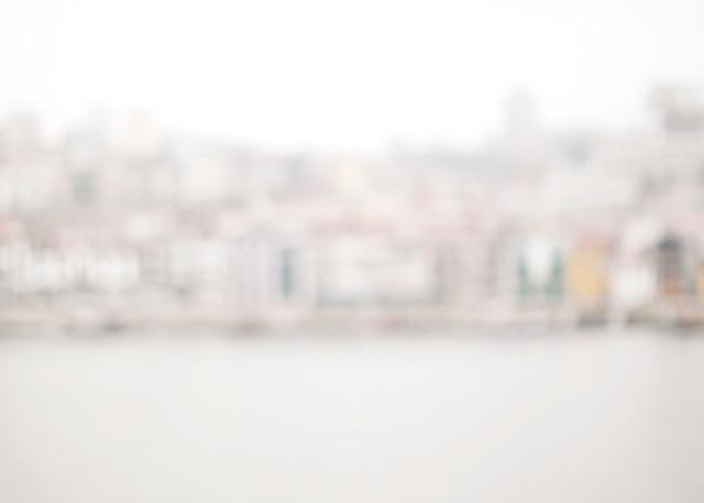 Birds Of Porto Photography Art | Belathée Fine Arts by Belathée Photography
