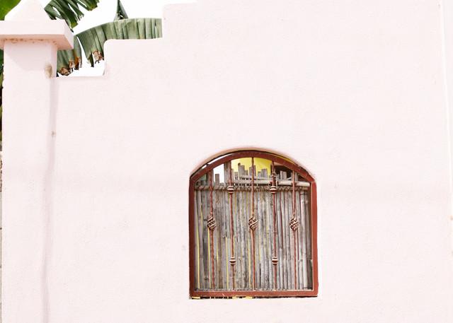 Baja Pink Photography Art | Belathée Fine Arts by Belathée Photography