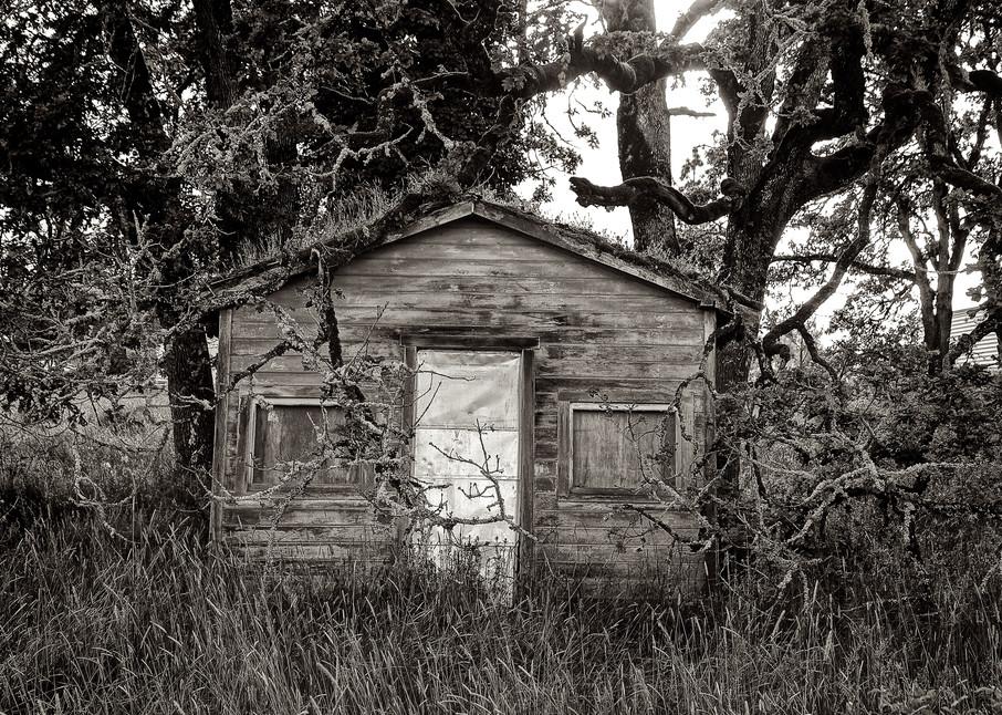 Delapidated Shack In Goshen Oregon Art   Shaun McGrath Photography