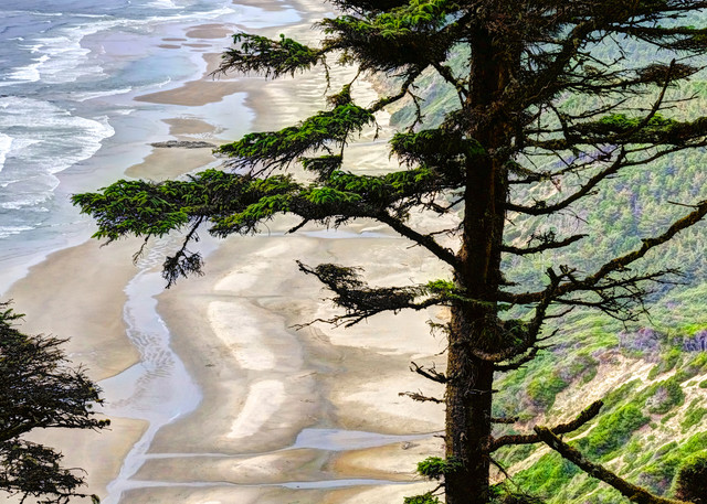 Hobbit Beach Art | Shaun McGrath Photography