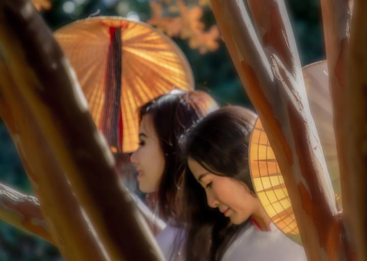Vietnamese Ladies In Autumn Photography Art | Dan Katz, Inc.