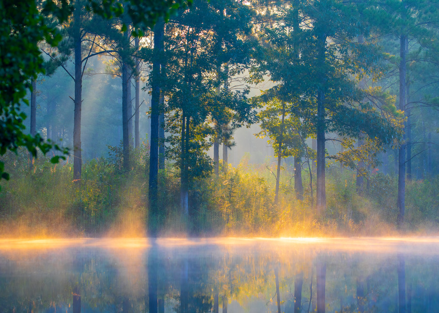Angels On The Water Photography Art | Laura Tidwell Photography