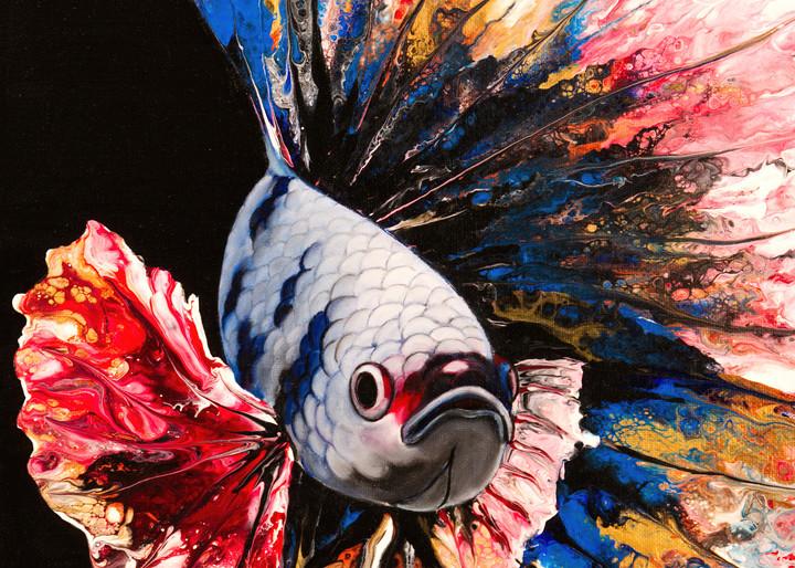 Rainbow Betta Fish Art   MMG Art Studio   Fine Art Colorado Gallery