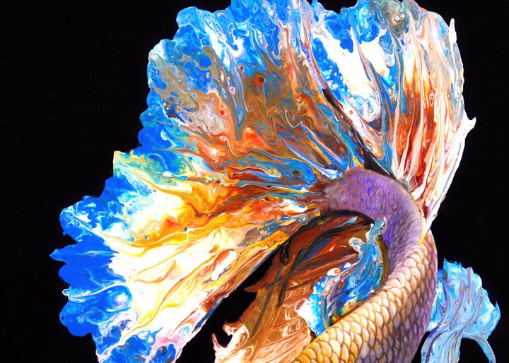 Golden Beta Art | MMG Art Studio | Fine Art Colorado Gallery