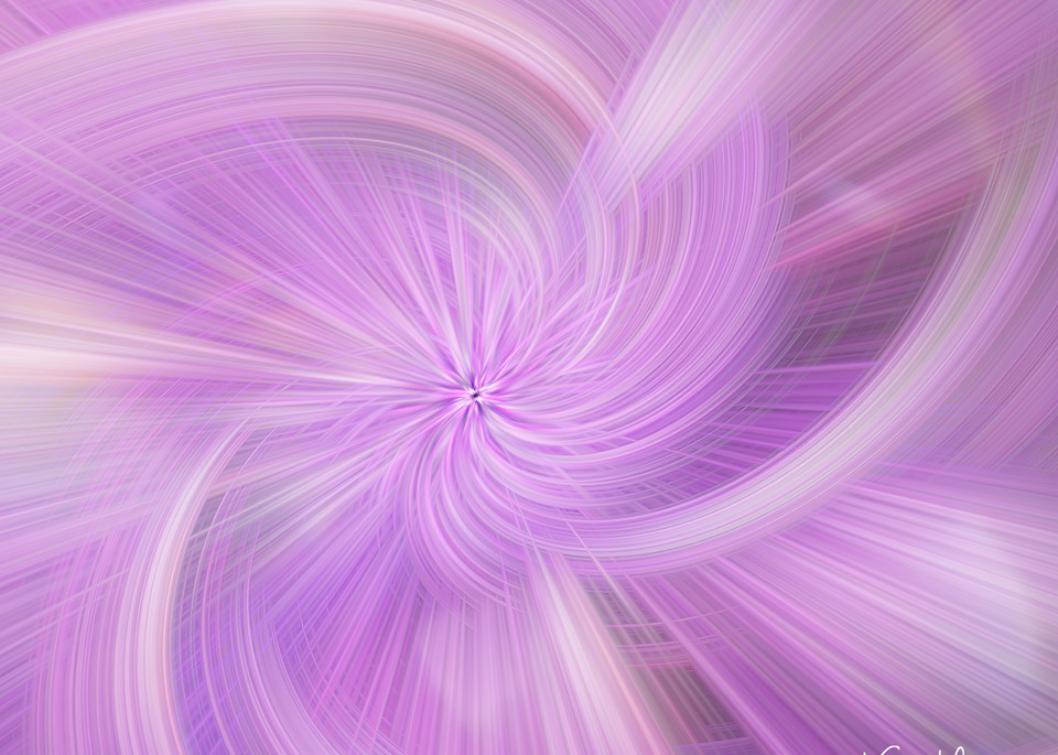 Orchid Twirl 40 X32 Photography Art   Images2Impact