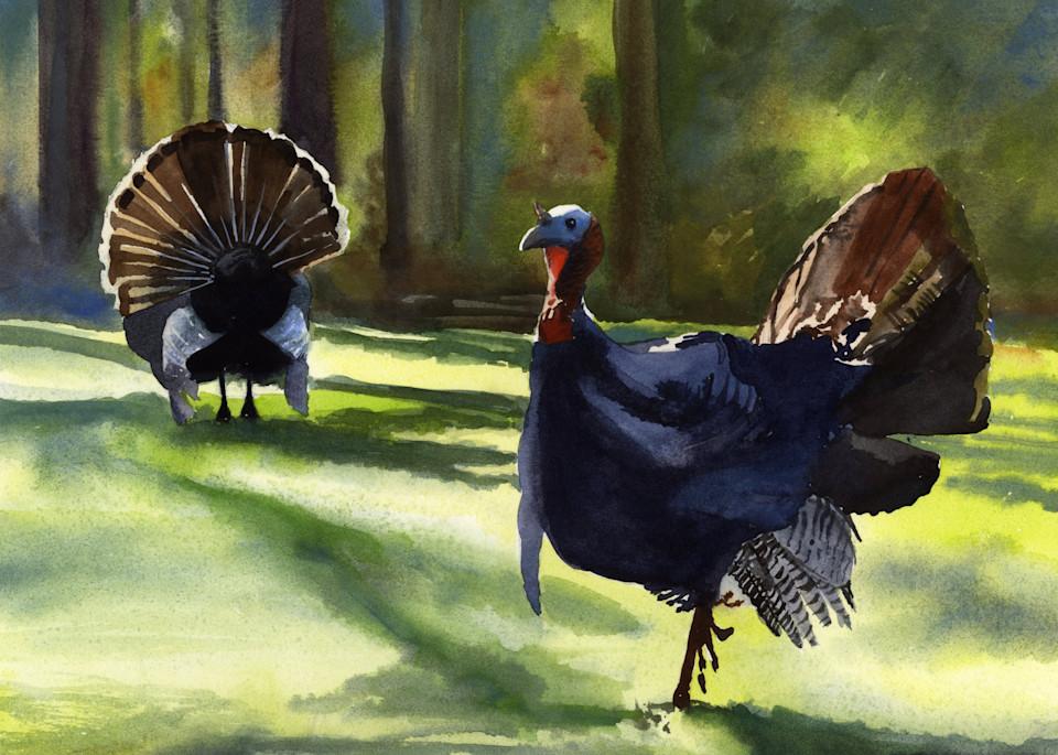 Got Turkeys?