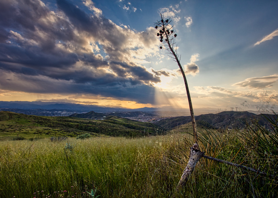 Spring In The Badlands Art | Chad Wanstreet Inc