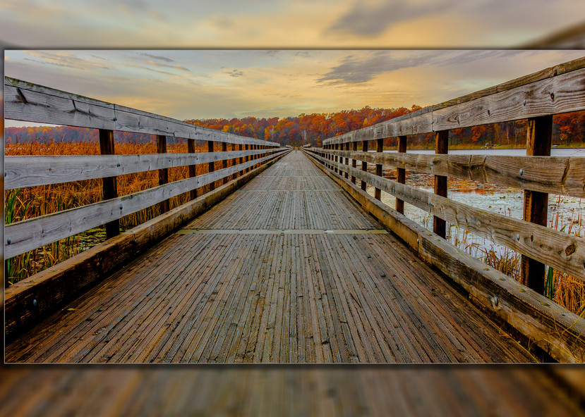 Dower Looking Forward Pano 3 D Photography Art | Whispering Impressions