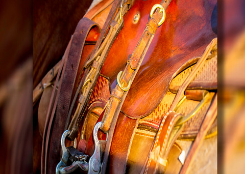 Horse Saddle Pano 3d  Photography Art | Whispering Impressions