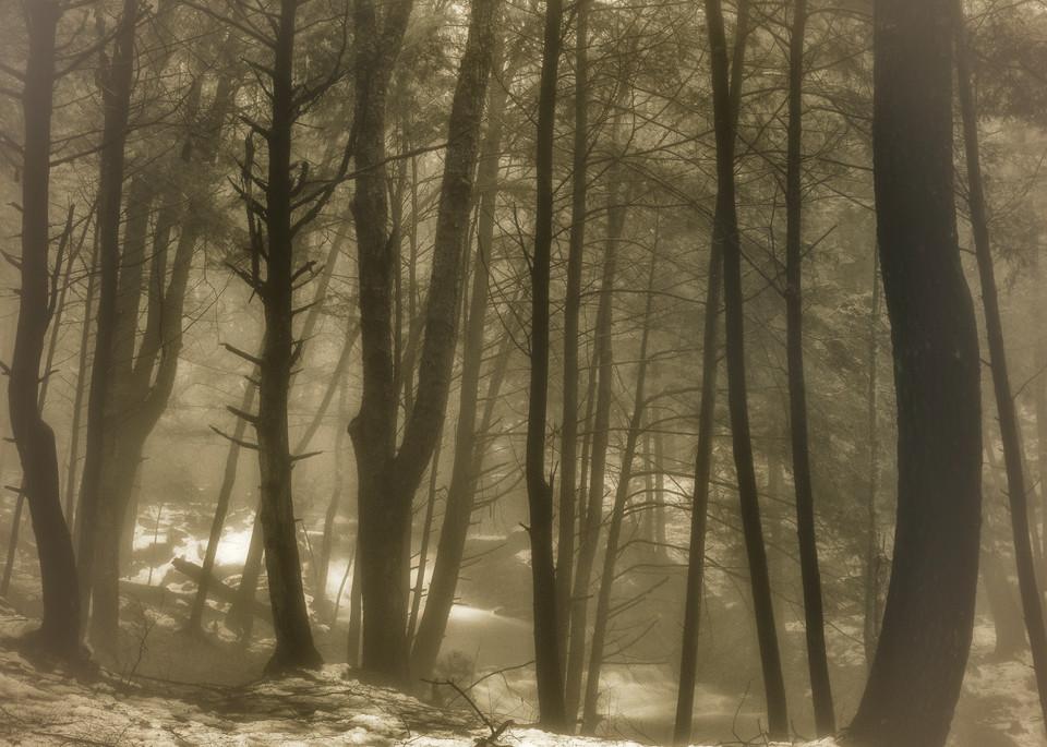 Rapp Run Clarion Pa 02 Photography Art   Mark Steele Photography Inc