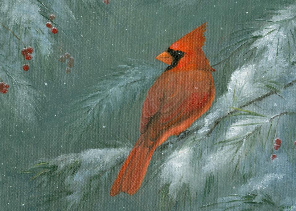 red-cardinal, snowy-scene-cardinal