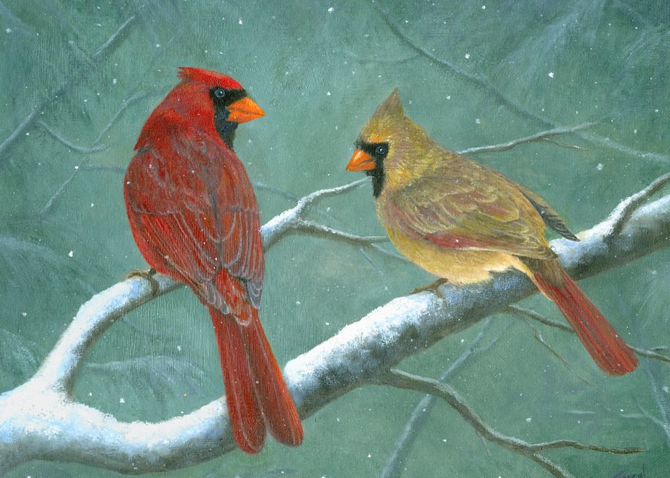 male-female-cardinals,