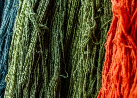 Rainbow Of Wool Photography Art | Michael Scott Adams Photography